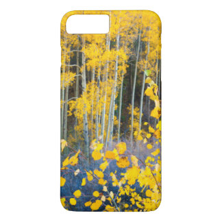 USA, Colorado. Bright Yellow Aspens In Rockies 2 iPhone 8 Plus/7 Plus Case
