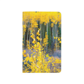 USA, Colorado. Bright Yellow Aspens In Rockies 2 Journal