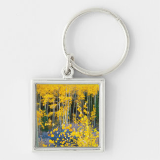 USA, Colorado. Bright Yellow Aspens In Rockies 2 Key Ring