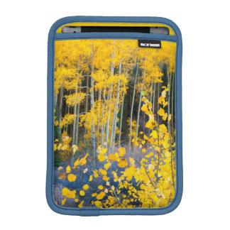 USA, Colorado. Bright Yellow Aspens In Rockies 2 Sleeve For iPad Mini