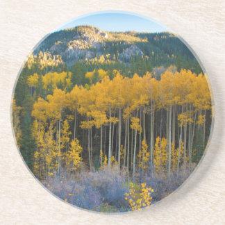 USA, Colorado. Bright Yellow Aspens in Rockies Coaster