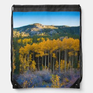 USA, Colorado. Bright Yellow Aspens in Rockies Drawstring Bag