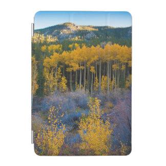 USA, Colorado. Bright Yellow Aspens in Rockies iPad Mini Cover