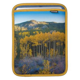 USA, Colorado. Bright Yellow Aspens in Rockies iPad Sleeves