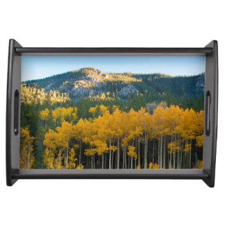 USA, Colorado. Bright Yellow Aspens in Rockies Serving Tray