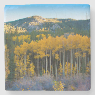 USA, Colorado. Bright Yellow Aspens in Rockies Stone Coaster