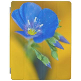 USA, Colorado. Close-up of cranesbill geranium iPad Cover