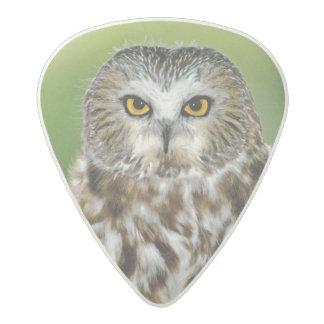 USA, Colorado. Close-up of northern saw-whet owl Acetal Guitar Pick
