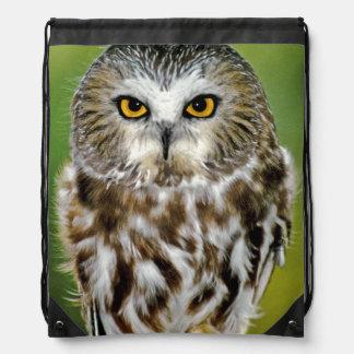 USA, Colorado. Close-up of northern saw-whet owl Drawstring Bag