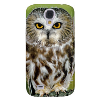 USA, Colorado. Close-up of northern saw-whet owl Galaxy S4 Case