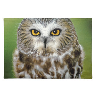USA, Colorado. Close-up of northern saw-whet owl Placemat