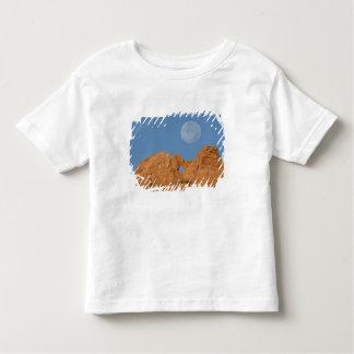 USA, Colorado, Colorado Springs, Garden of the 2 Tshirt