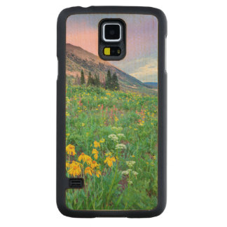 USA, Colorado, Crested Butte. Landscape 2 Carved Maple Galaxy S5 Case