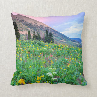 USA, Colorado, Crested Butte. Landscape 2 Cushion