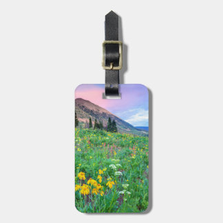 USA, Colorado, Crested Butte. Landscape 2 Luggage Tag