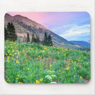 USA, Colorado, Crested Butte. Landscape 2 Mouse Mat