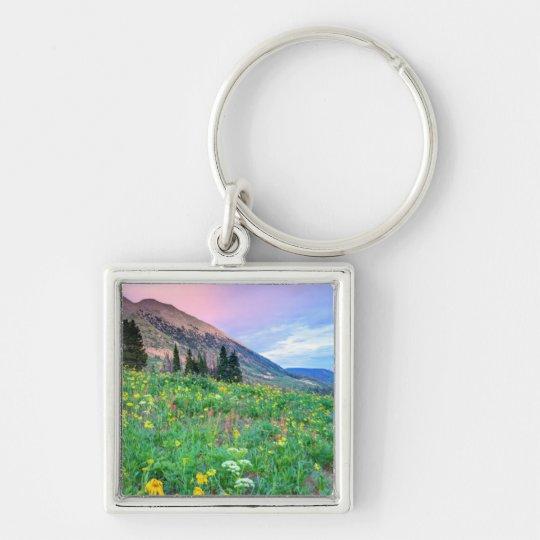 USA, Colorado, Crested Butte. Landscape 2 Silver-Colored Square Key Ring