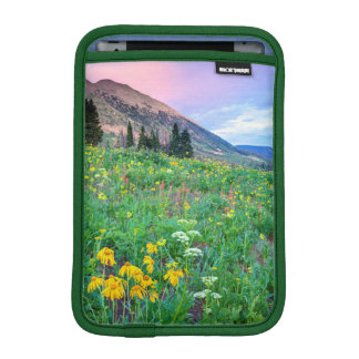 USA, Colorado, Crested Butte. Landscape 2 Sleeve For iPad Mini