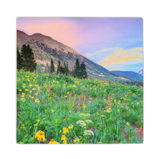 USA, Colorado, Crested Butte. Landscape 2 Wood Coaster