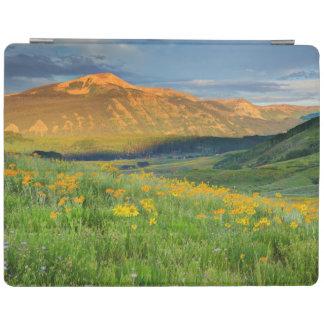 USA, Colorado, Crested Butte. Landscape 3 iPad Cover