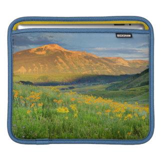 USA, Colorado, Crested Butte. Landscape 3 iPad Sleeve