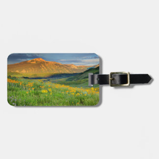 USA, Colorado, Crested Butte. Landscape 3 Luggage Tag