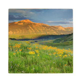 USA, Colorado, Crested Butte. Landscape 3 Maple Wood Coaster