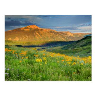 USA, Colorado, Crested Butte. Landscape 3 Postcard