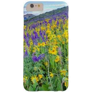 USA, Colorado, Crested Butte. Landscape Barely There iPhone 6 Plus Case