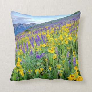 USA, Colorado, Crested Butte. Landscape Cushion