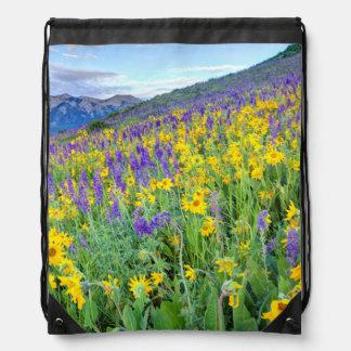 USA, Colorado, Crested Butte. Landscape Drawstring Bag
