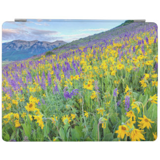 USA, Colorado, Crested Butte. Landscape iPad Cover
