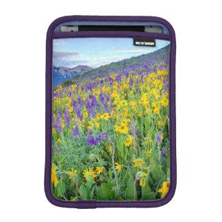 USA, Colorado, Crested Butte. Landscape iPad Mini Sleeves