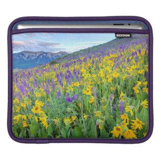 USA, Colorado, Crested Butte. Landscape iPad Sleeve