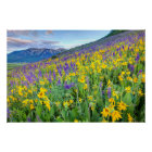 USA, Colorado, Crested Butte. Landscape Poster