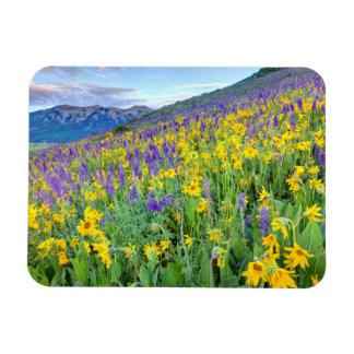USA, Colorado, Crested Butte. Landscape Rectangular Photo Magnet