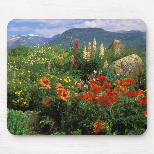 USA, Colorado, Crested Butte. Poppies and lupine Mouse Mat