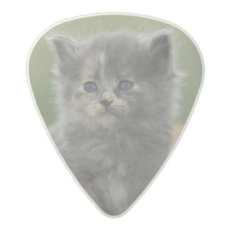 USA, Colorado, Divide. Two barn kittens pose on Acetal Guitar Pick