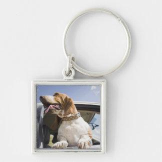 USA, Colorado, dog looking through car window 2 Key Ring