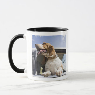 USA, Colorado, dog looking through car window 2 Mug