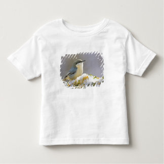 USA, Colorado, Frisco. Close-up of pygmy Toddler T-Shirt