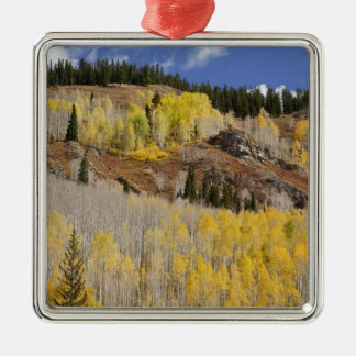 USA, Colorado, Gunnison National Forest, along Christmas Ornament