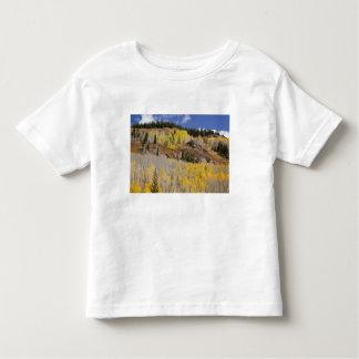 USA, Colorado, Gunnison National Forest, along Toddler T-Shirt