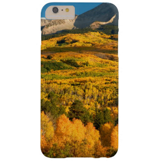 USA, Colorado, Gunnison National Forest Barely There iPhone 6 Plus Case