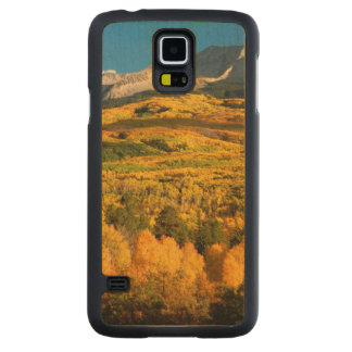 USA, Colorado, Gunnison National Forest Carved Maple Galaxy S5 Case