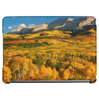 USA, Colorado, Gunnison National Forest Case For iPad Air