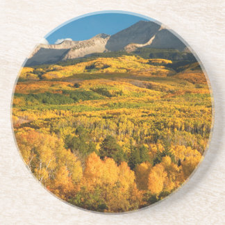 USA, Colorado, Gunnison National Forest Coaster