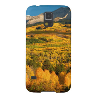USA, Colorado, Gunnison National Forest Galaxy S5 Cover