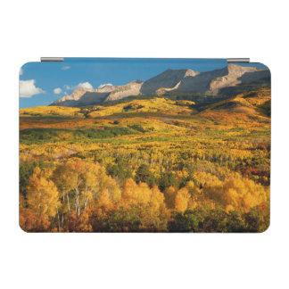 USA, Colorado, Gunnison National Forest iPad Mini Cover
