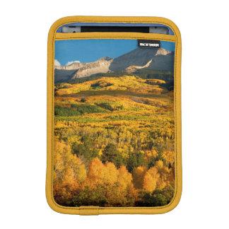 USA, Colorado, Gunnison National Forest iPad Mini Sleeve